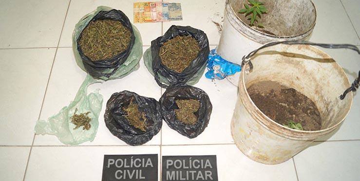 Photo of Homem é preso em Simões por cultivo e tráfico de maconha