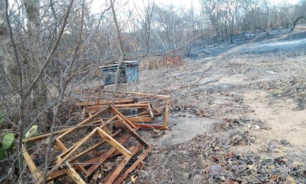 Photo of Em Santana do Piauí, incêndio destrói áreas agrícolas e de apicultura