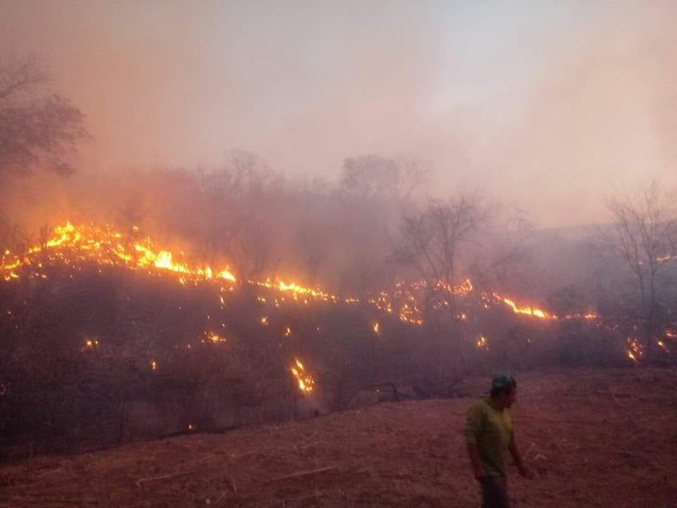 Photo of Incêndio florestal de grandes proporções causa destruição em Santana do Piauí