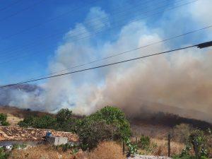 Incêndio em vegetação no município de Santana do Piauí