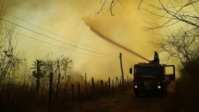 Photo of Incêndio em vegetação atinge comunidades de Picos e Sussuapara
