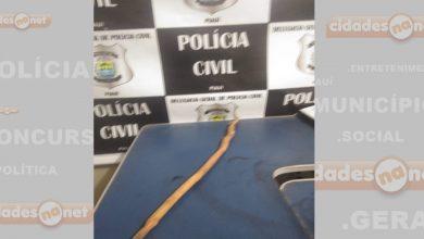 Photo of Vera Mendes: Idosa é agredida por sobrinha com golpes de pedaço de madeira
