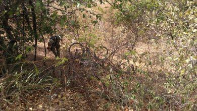 Photo of Homem morre após perder controle de bicicleta e cair em aterro na BR 407 em Patos do Piauí