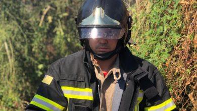 Photo of Em Picos, bombeiros resgatam filhotes de cachorro durante incêndio