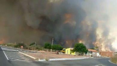 Photo of Incêndio consome vegetação e há três dias ameaça casas na região de Picos