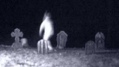 Photo of Conheça a misteriosa história do adolescente que visita cemitério de Araripina após a meia noite