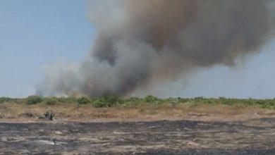 Photo of Incêndio ainda ameaçar plantações e residências em Pio IX