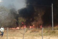 Photo of Picos registra 100 focos de incêndio durante o mês de julho
