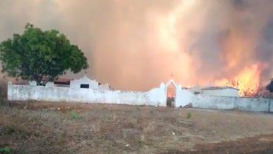 Photo of Incêndio dura mais de 24 horas e ameaça cemitério em Sussuapara; vídeo