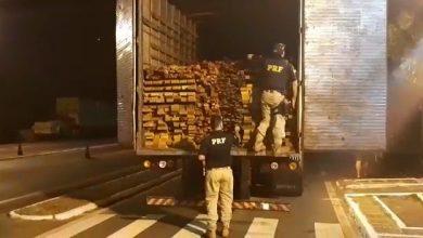 Photo of Picos: PRF apreende veículo com madeira sem licença avaliada em R$22 mil