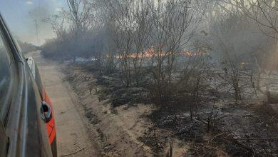 Photo of Incêndio ambiental ameaça atingir casas em Pio IX