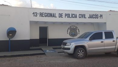 Photo of Criança encontrada ferida em Jaicós se jogou de carro em movimento, diz Polícia